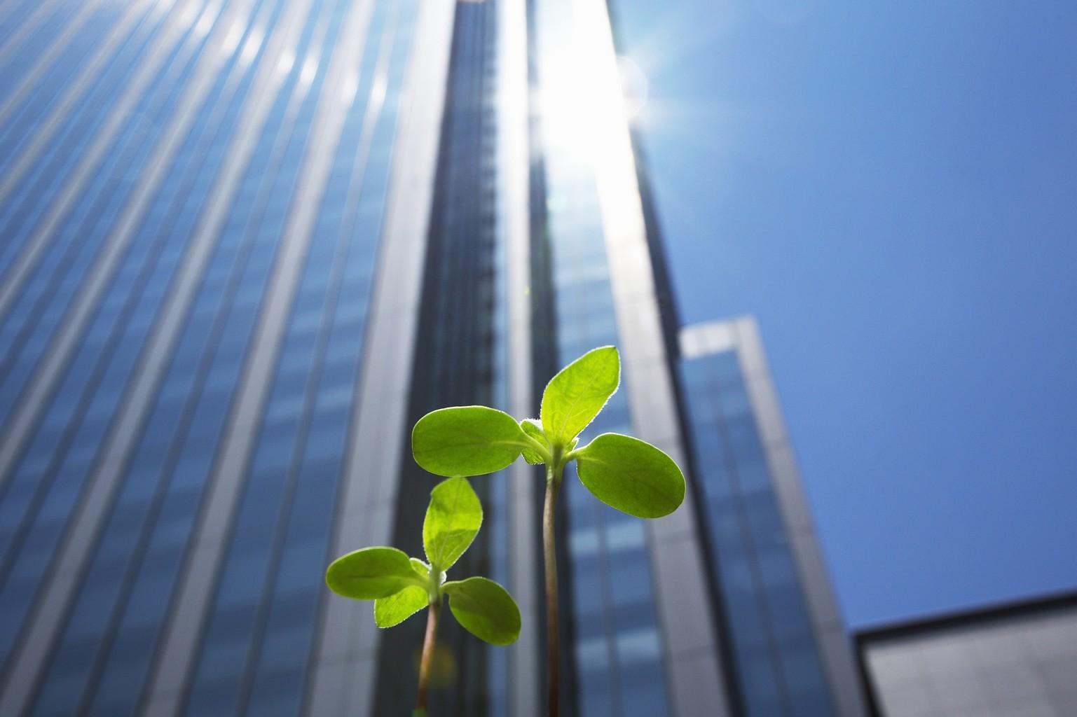 10 réseaux pour la Responsabilité sociétale des entreprises