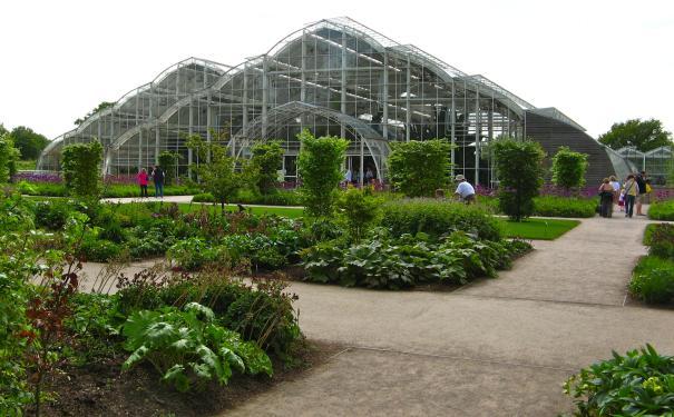 Les jardins botaniques des Pays-Bas