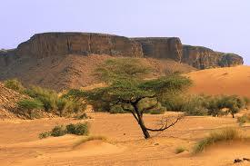 Les lieux incontournables à visiter en Mauritanie