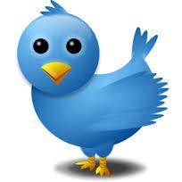 Les trucs à connaître pour gagner des followers sur Twitter